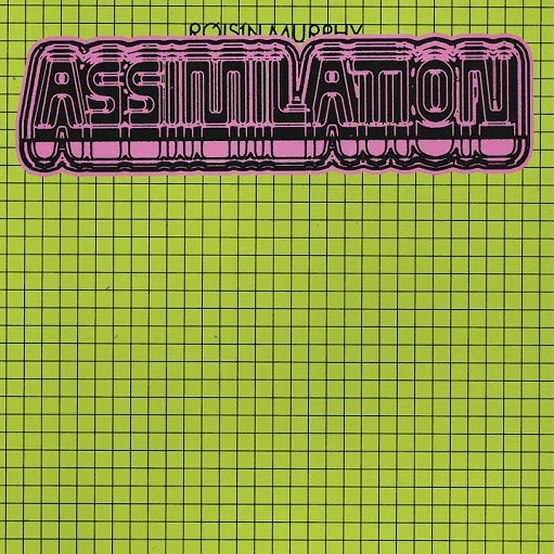 Assimilation Lyrics Róisín Murphy